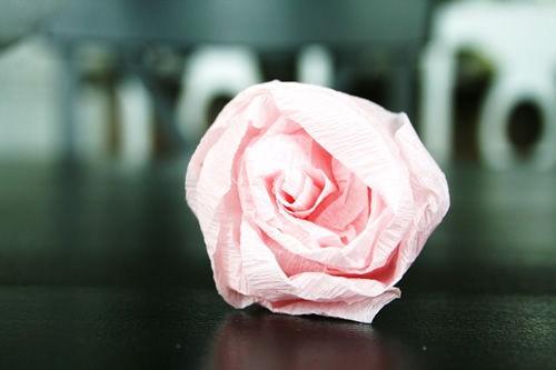 fotografia da flor de papel crepom finalizada