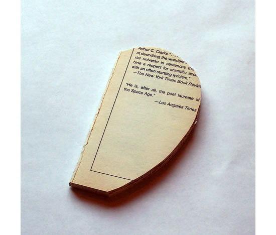 Metade da maçã cortada no livro velho