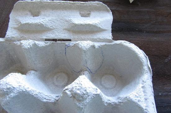 Caixa de ovos de papelão, corte do bico do galo