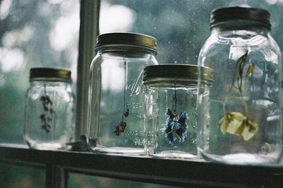 Potes de vidro com flores decorando a janela