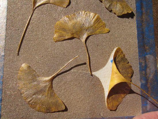 Retirando as folhas da pintura para fazer a estampa