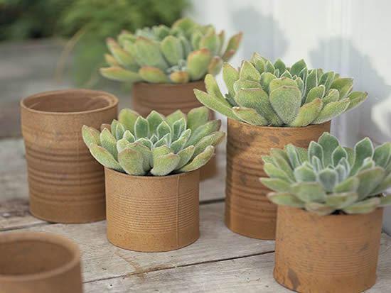 Latinhas decoradas para plantar