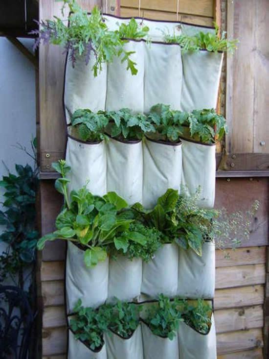 Porta-bijuterias reciclado para criar vasinhos de plantas