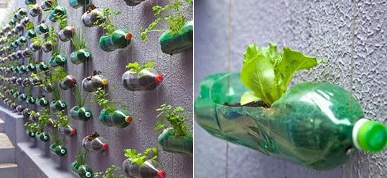 Garrafas PET para fazer artesanato e plantar plantinhas
