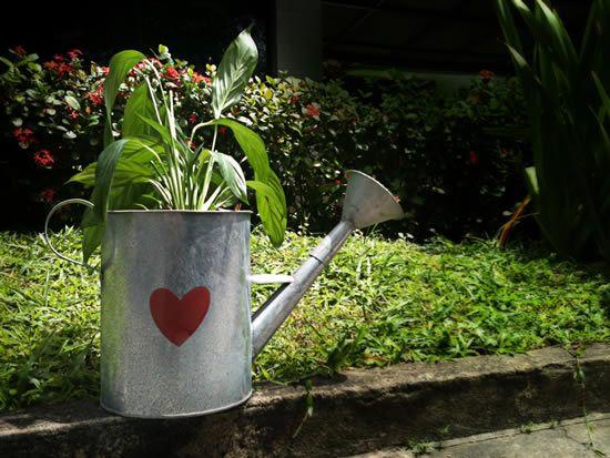 Como fazer um item de decoração para o jardim