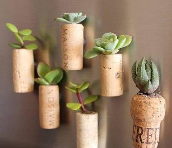 Plantinhas suculentas plantadas em rolhas e feitas de imãs de geladeira