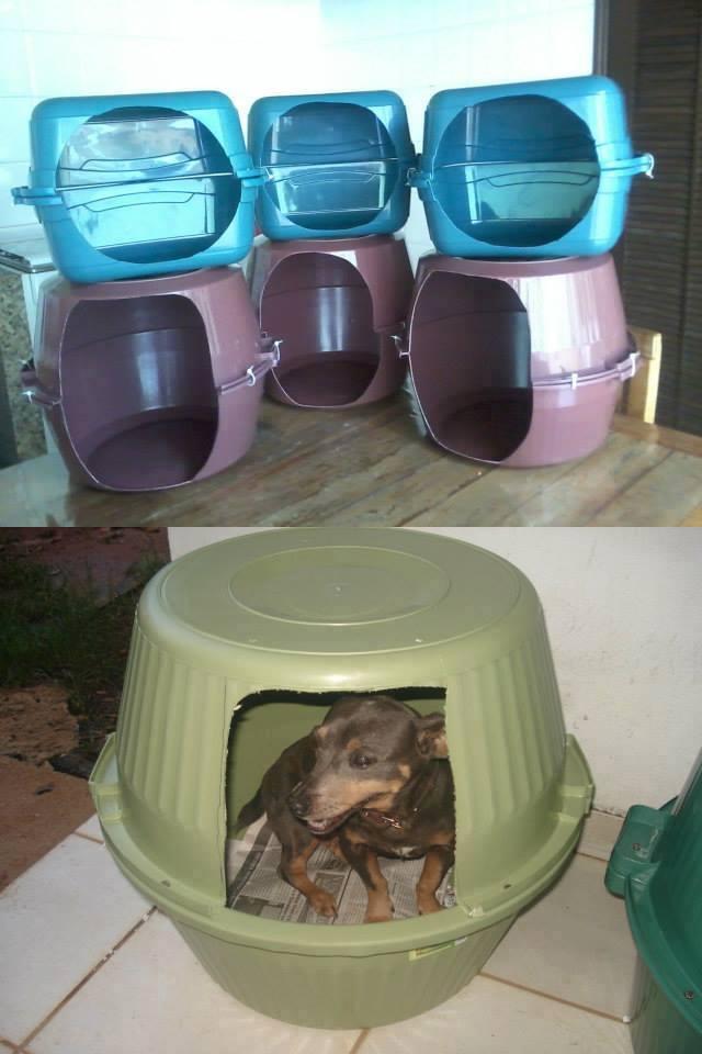 Linda asa para cachorros e gatos com Bacias recicladas