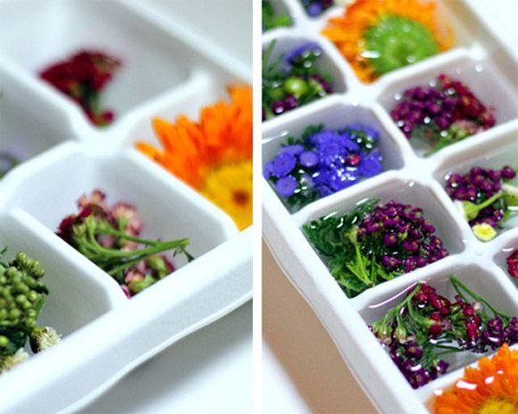 como fazer cubos de gelo decorados