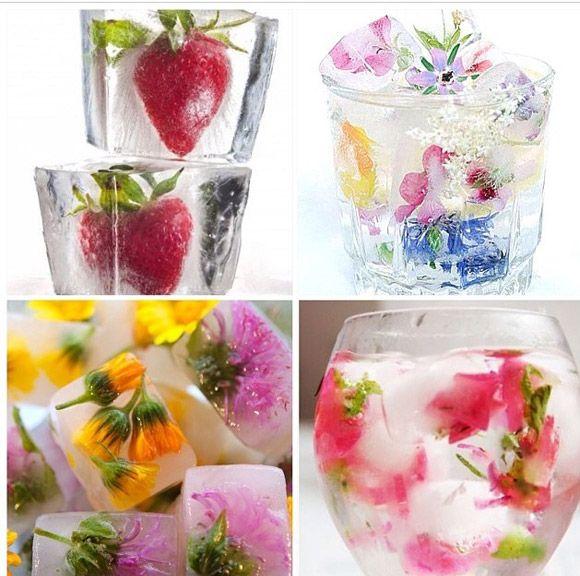 Lindo exemplo de cubos de gelo decorados com flores e frutas