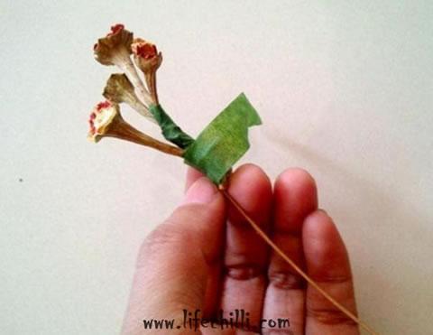 Flores decorativas com talinhos de pimenta