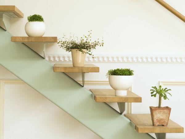 vasos de planta na escada