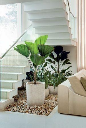 vasos de plantas em jardins