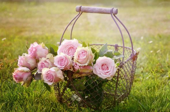 Decoração para piquenique romântico