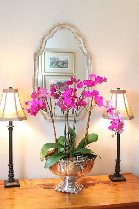 Decoração com Orquídeas para a Casa