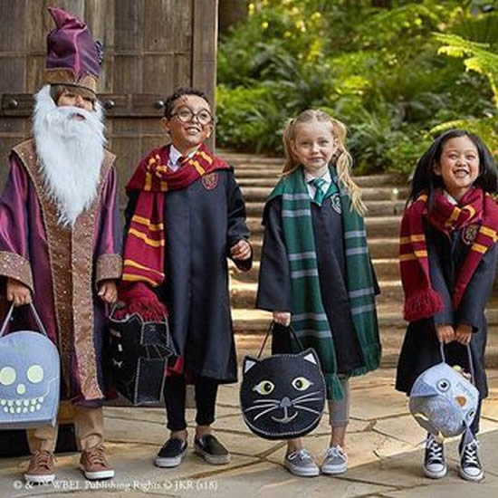 Fantasia Infantil de Harry Potter