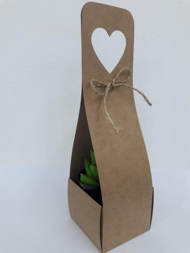 caixa embalagem para mini suculentas