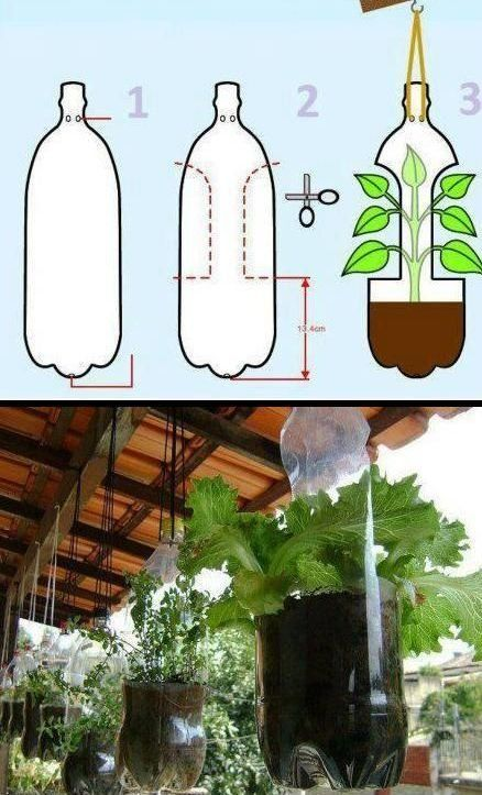 projeto de jardim vertical de garrafa pet