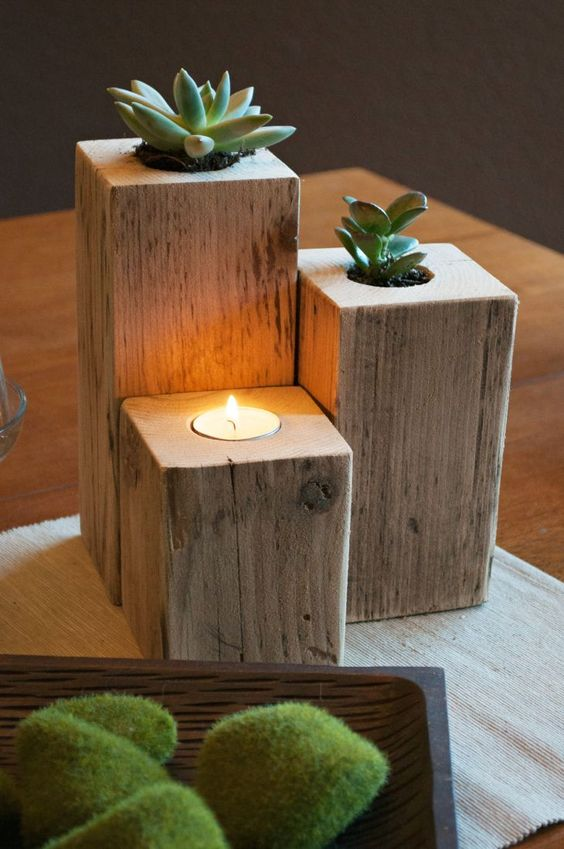 cactos e suculentas em vasos de madeira