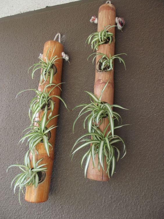 lindo vaso vertical de bambu