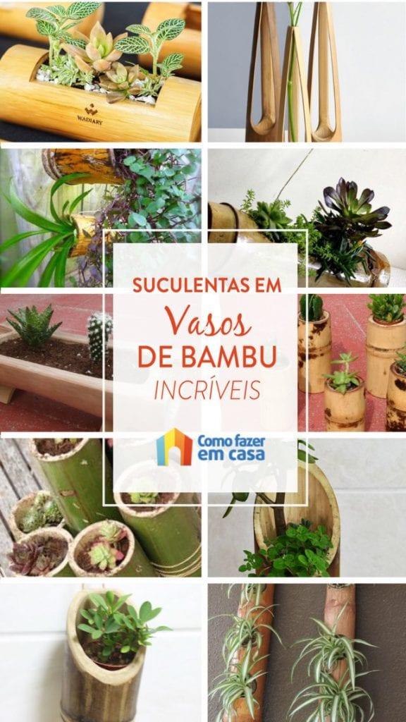 suculenta em vasos de bambu