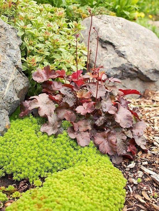 Decoração de pedras para jardim