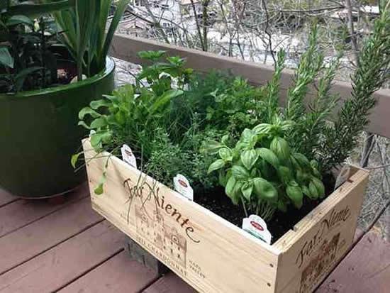 Lindas decorações com caixotes para jardim