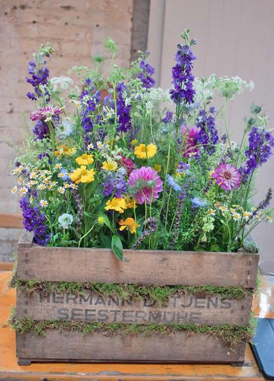 Linda decoração com caixote em jardim