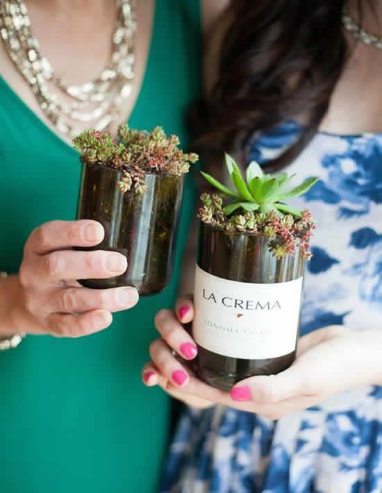 Lindas suculentas plantadas em garrafas