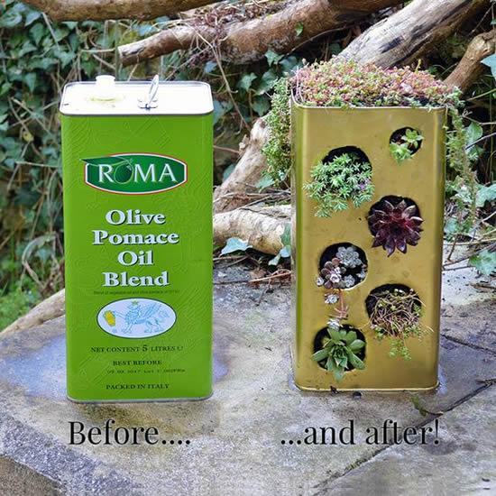 Ideia incrível para plantar mini suculenta