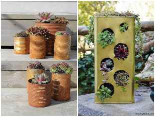12 ideias lindas de mini suculentas em latas