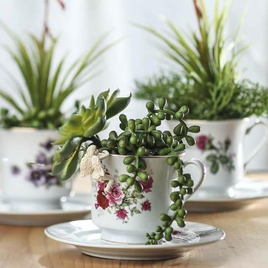 Plante mini suculentas em xícaras