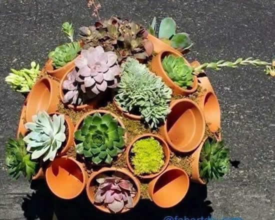 Dicas para plantar suculentas de modo criativo