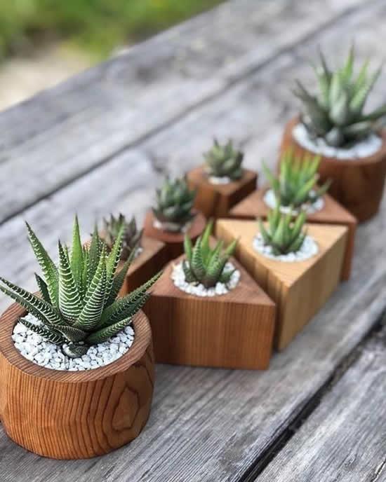 Vasos geométricos de madeira com suculentas