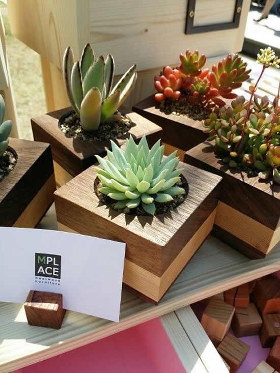 Lembrancinhas com suculentas em vasos de madeira