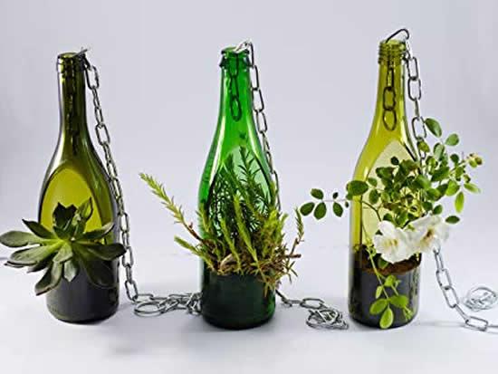 Terrários com suculentas e reciclagem