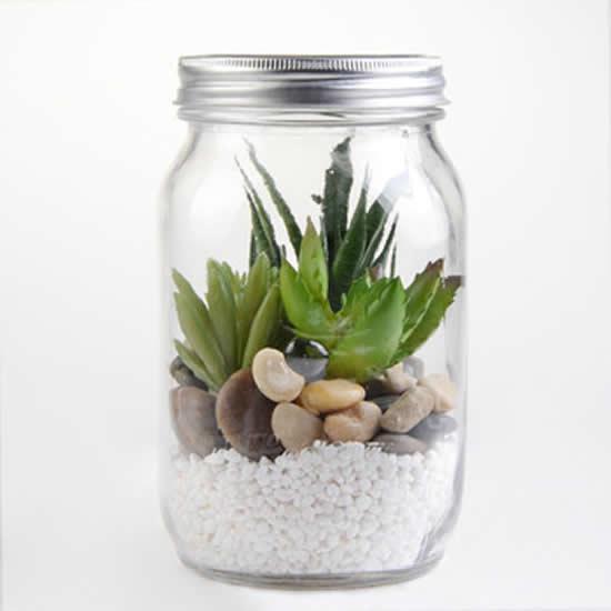 Dicas para fazer terrários de suculentas com potes de vidro